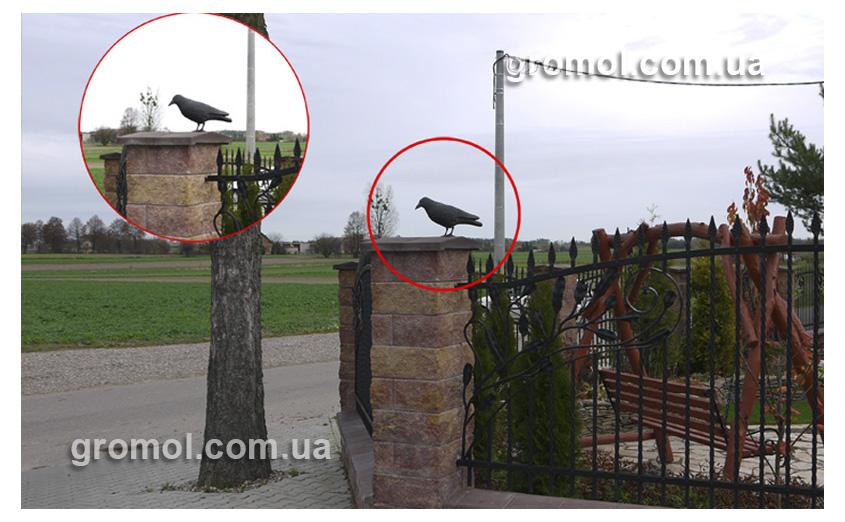 Отпугиватель голубей своими руками 13