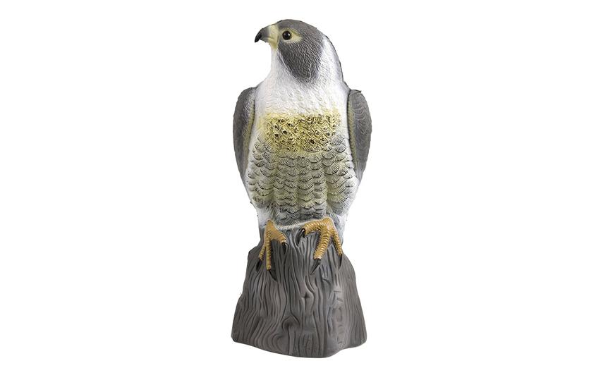 Муляж сокола для отпугивания птиц